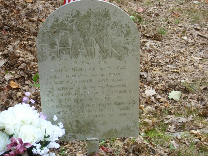 grave marker at Coon Dog Cemetery