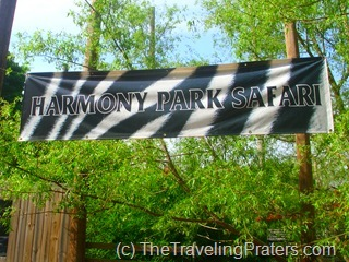 Harmony Park Safari; A Hidden Gem in Huntsville, AL