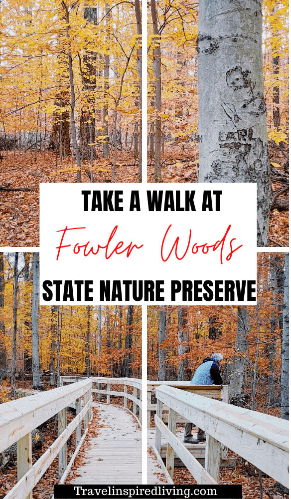 Fowler Woods State Nature Preserve near Mansfield, Ohio