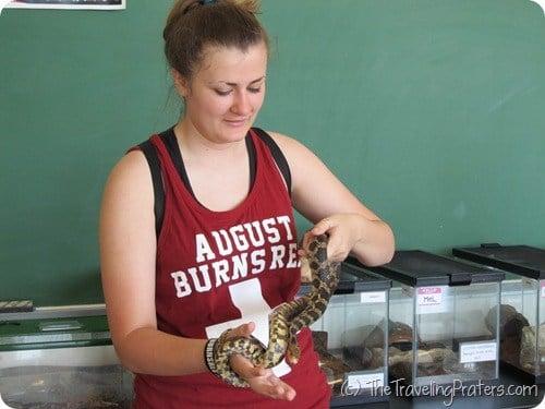 Snake handling at Stone Lab