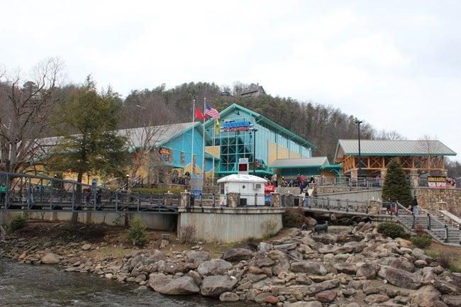 Visiting Ripley's Aquarium of the Smokies in Gatlinburg, Tennessee