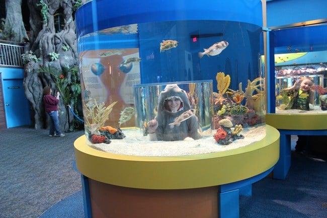 Discovery Bay at Ripley's Aquarium of the Smokies