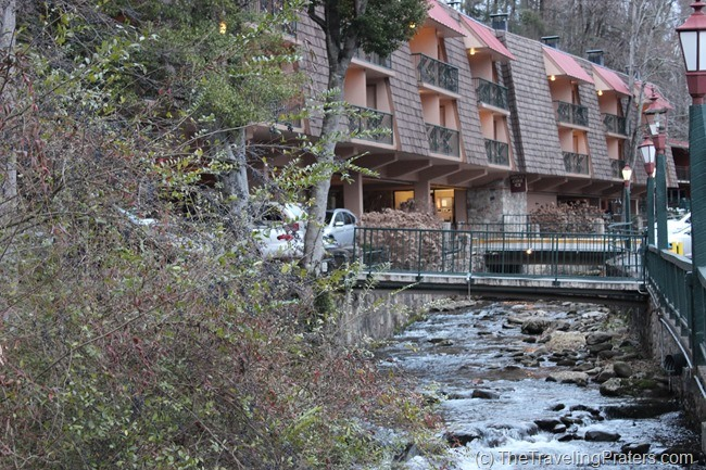 LaConte Creek at Quality Inn Creekside
