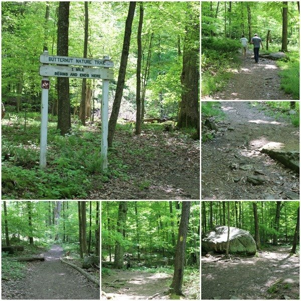 Butter Nut Nature Trail at Malabar Farm State Park