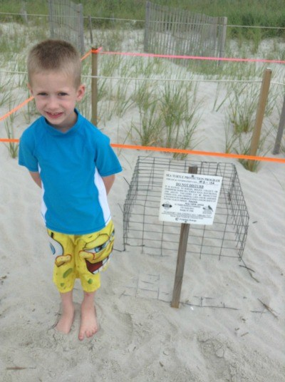 Protected Turtle Nest at Holden Beach