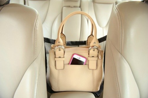 Car Cache with Purse