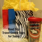 Road Trip Travel Goodie Bags for Teens