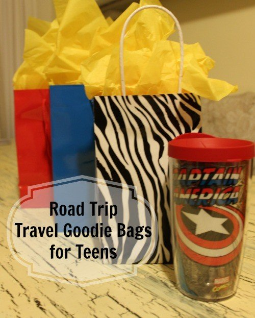 Road Trip Travel Goodie Bags