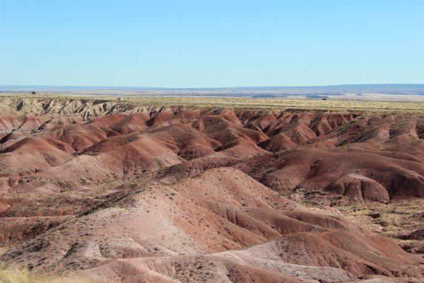 The Painted Desert and Petrified Forest National Park