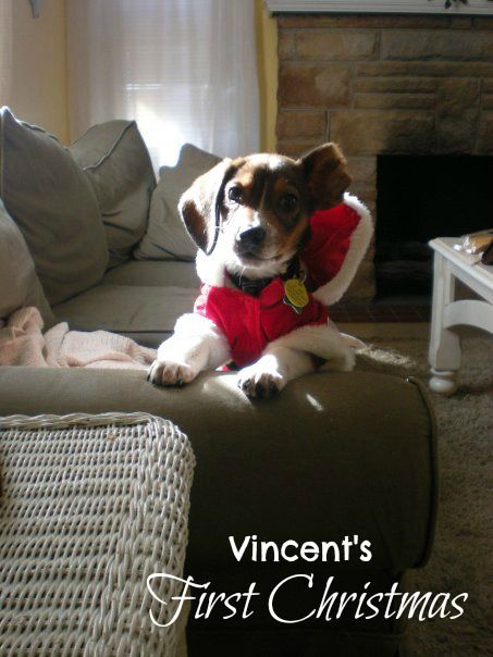 Vincent's First Christmas #shop