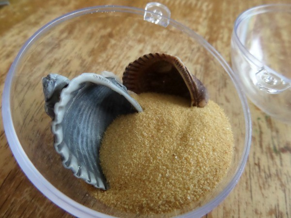 Add shells and sand to your clear ornament to make your beach Christmas ornaments.