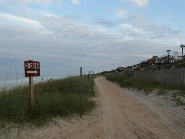 Horse trail along Mickler's Beach