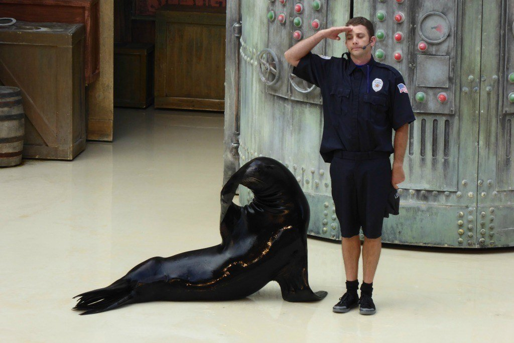 Airmen can get in to Seaworld free during the Lackland AFB Graduations.