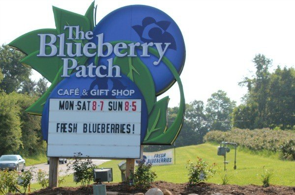 The Blueberry Patch on West Hanley Road Mansfield, Ohio
