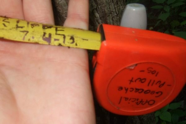 unique geocache with starting-to-swell hand- The Joys of Geocaching with Jessica Lippe