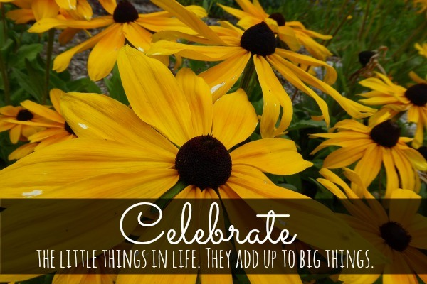 Celebrate the Little Things