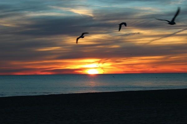 Sunrise at Lake Erie
