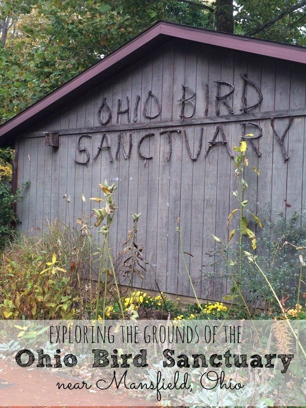 Exploring the grounds of the Ohio Bird Sanctuary near Mansfield Ohio