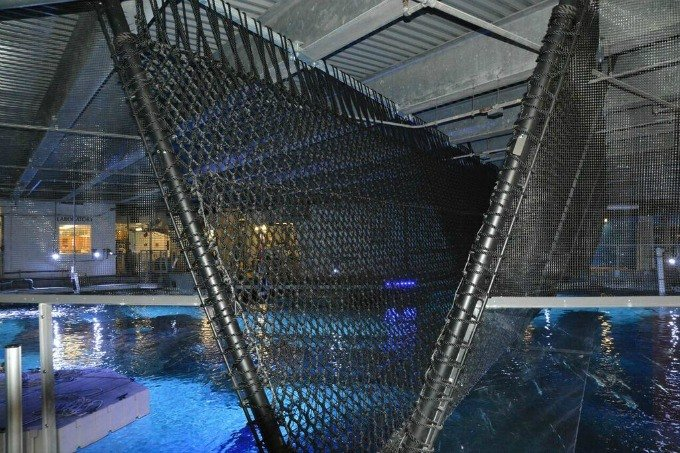 Shark Bridge Opens at Newport Aquarium
