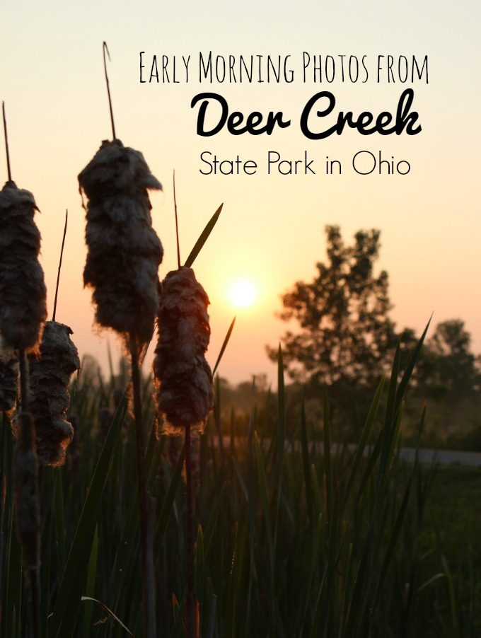 Early Morning Photos From Deer Creek State Park in Ohio.