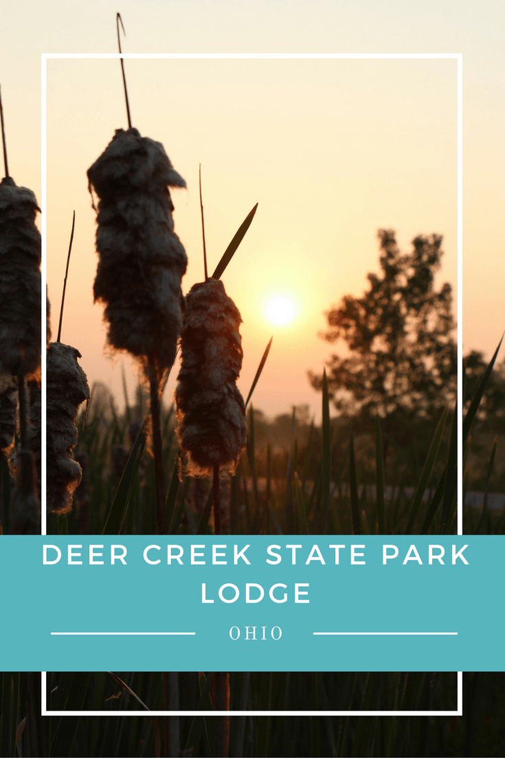 Our first family trip to Deer Creek State Park Lodge did not go as planned, but my second trip almost made up for it. Now to convince the family to return with me.