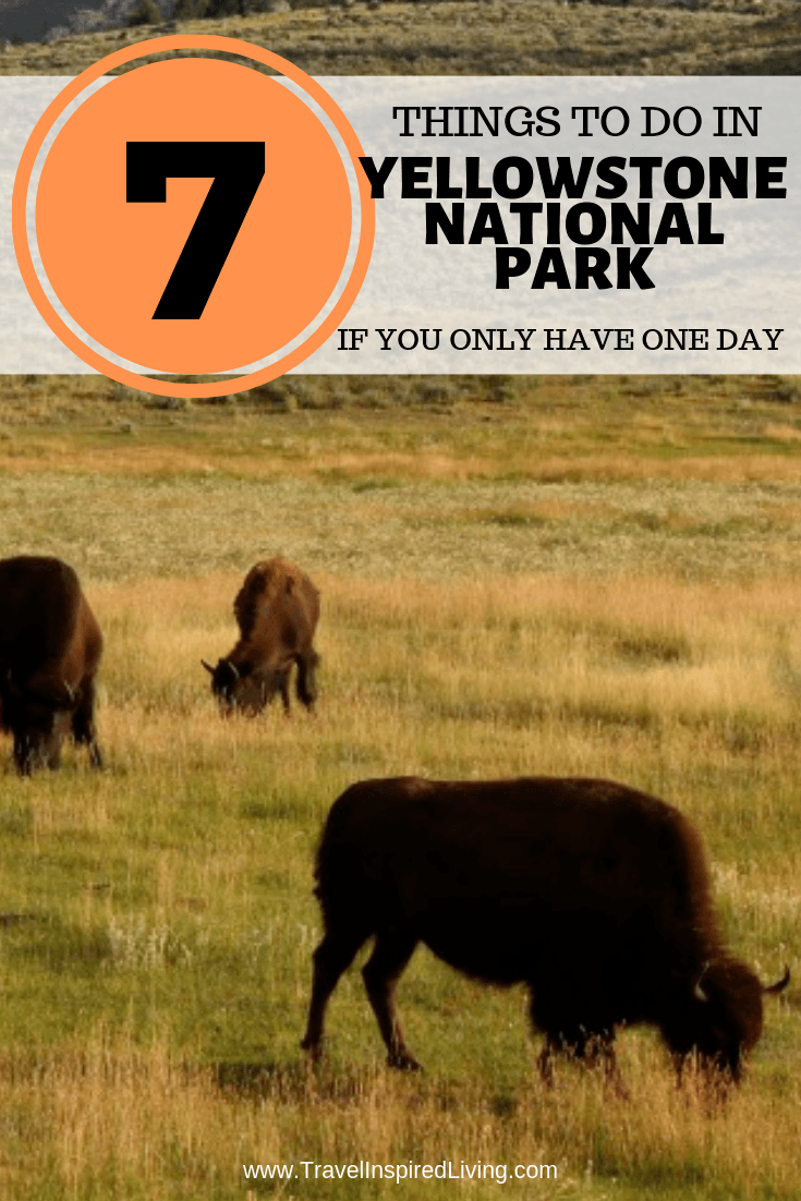 7 things to do in Yellowstone National Park if you only have one day.