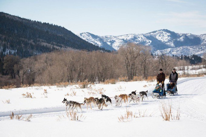 Dog sledding in Park City Utah