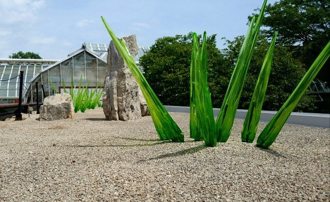 Spend a weekend in Columbus exploring the arts and you may see these Chihuly pieces at the Franklin Park Conservatory