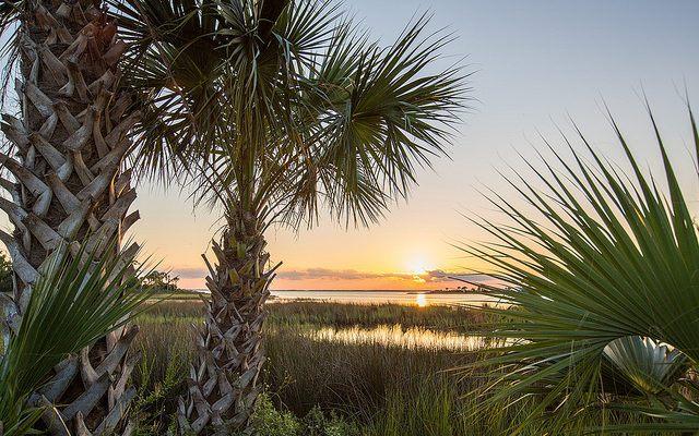Escape Winter in Gulf County, Florida