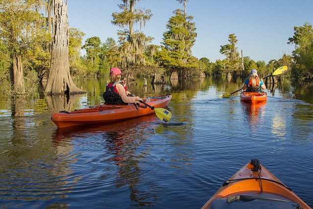 Kayaking is just one of the adventures you can have in Gulf County, Florida.