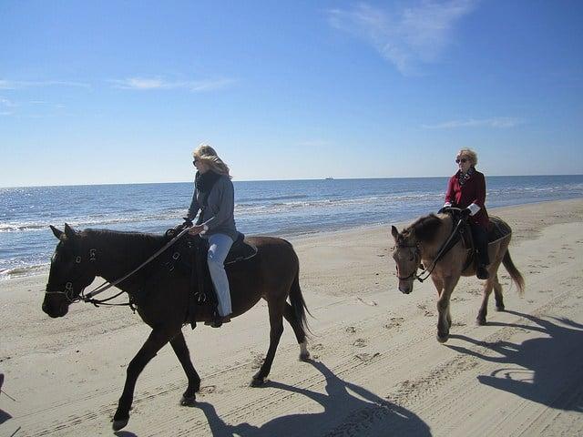Enjoy horseback riding on the beach in Gulf County, Florida.