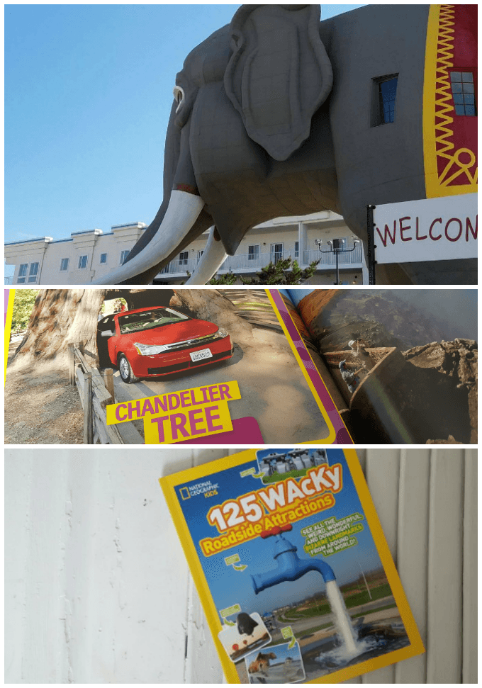 125 Wacky Roadside Attractions is a National Geographic Book for Kids