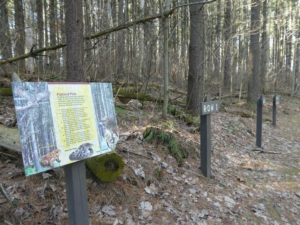 placards along Discovery Trail