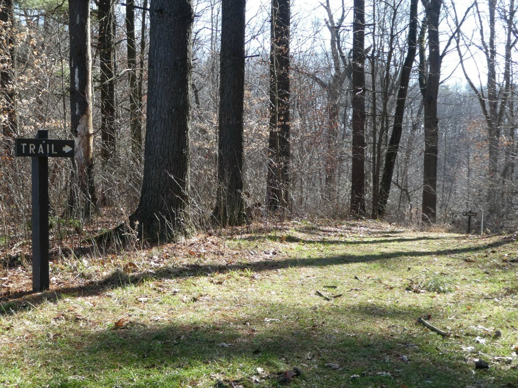 Hike the 2-mile Long Interpretive Discovery Forest Trail in the Mohican-Memorial State Forest for a deeper understanding of forest management.