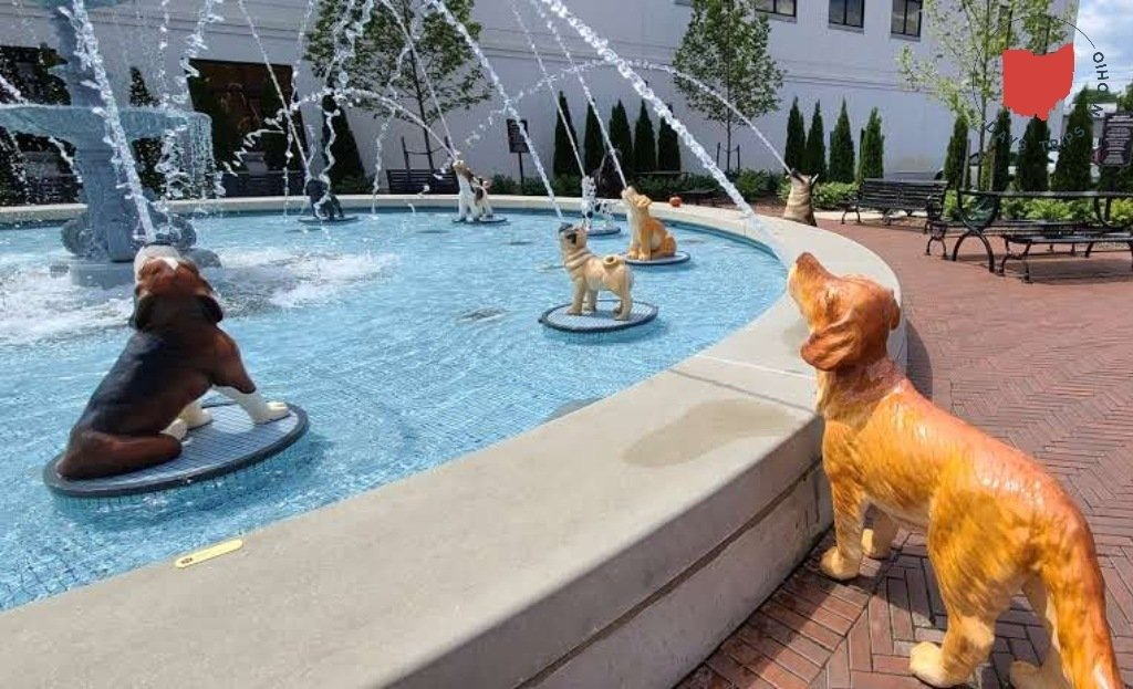 A colorful water fountain made of cast iron dogs