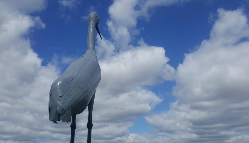 . The World's Largest Sandhill Crane is located in Steele, North Dakota