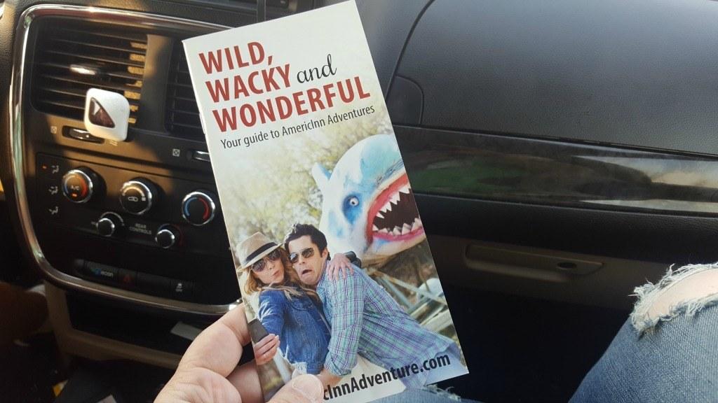 wild wacky and wonderful