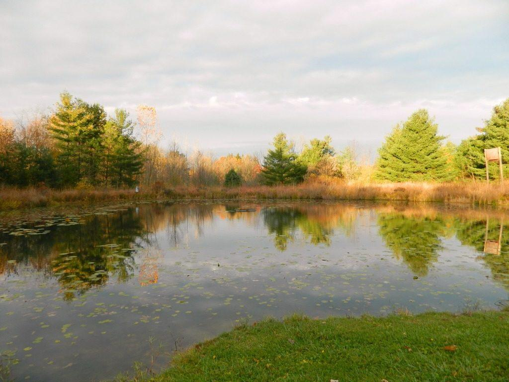 Gorman Nature Center is a popular attraction for outdoor recreation near Mansfield Ohio