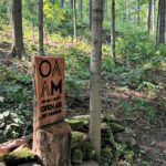 Take a Stroll through the Holmes County Open Air Art Museum