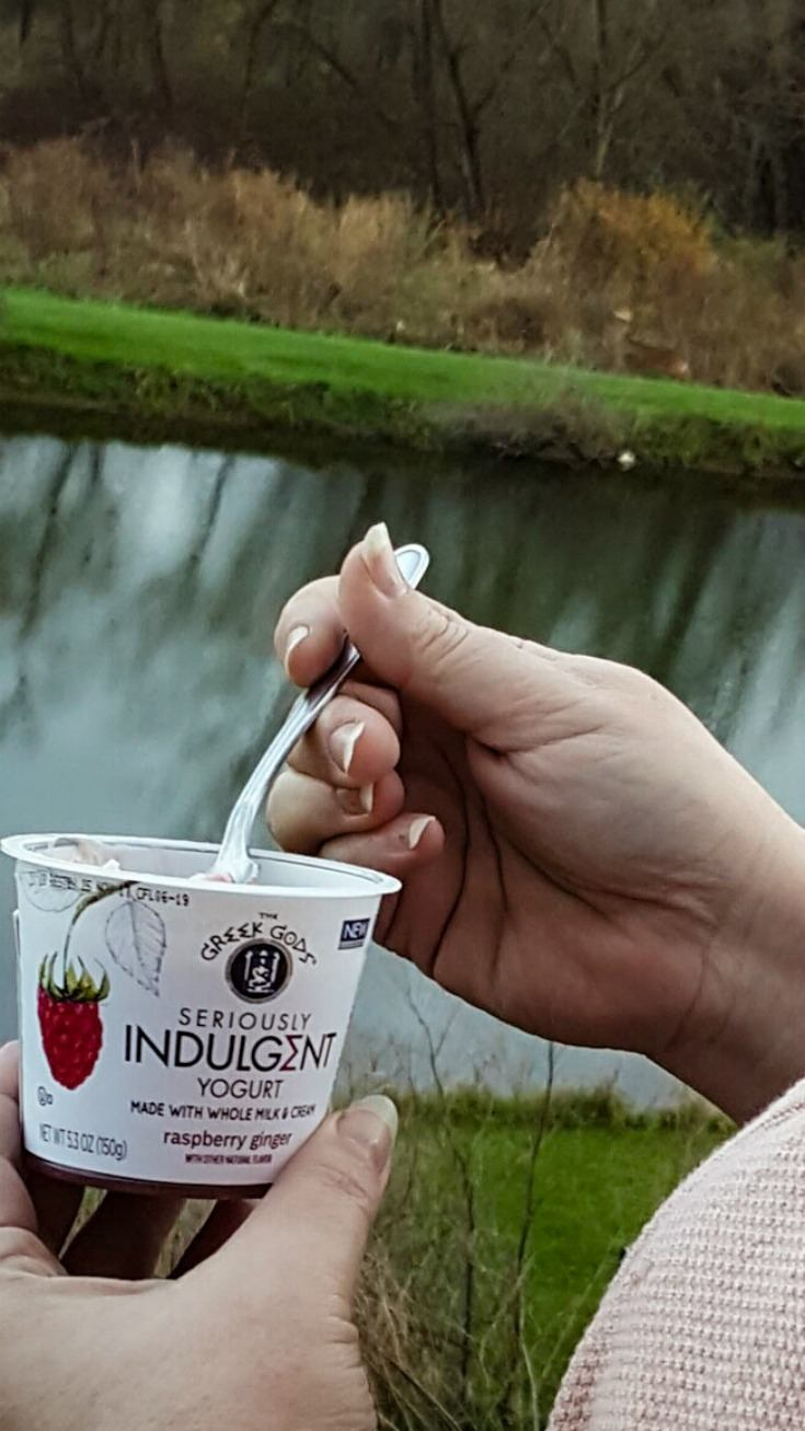 Seriously Indulgent Yogurt is seriously delicious