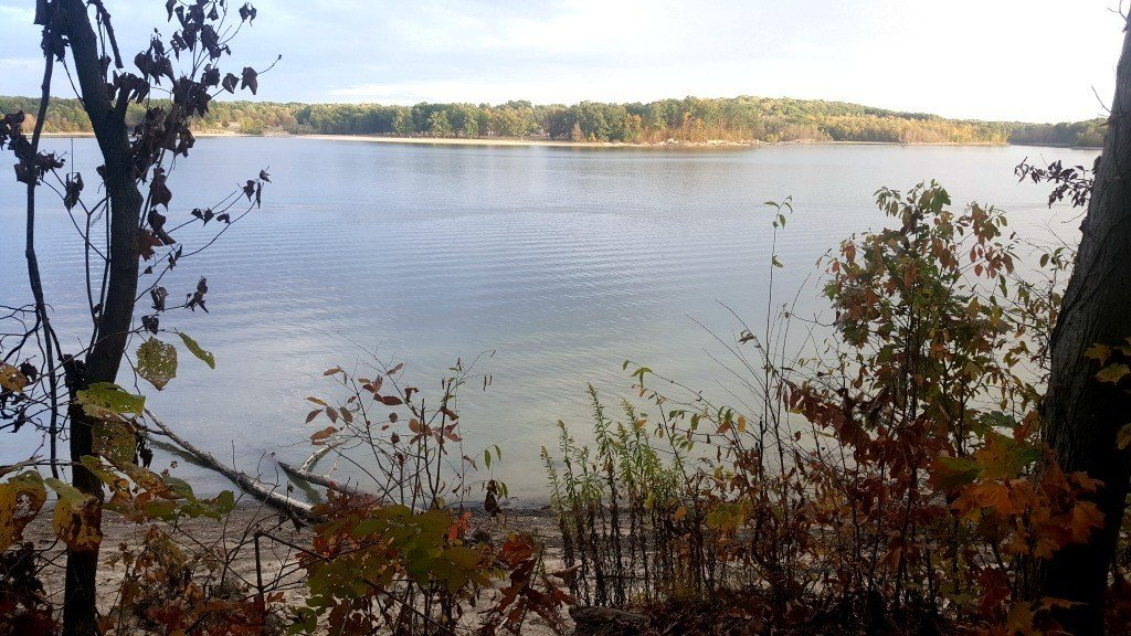 View of water from campsite