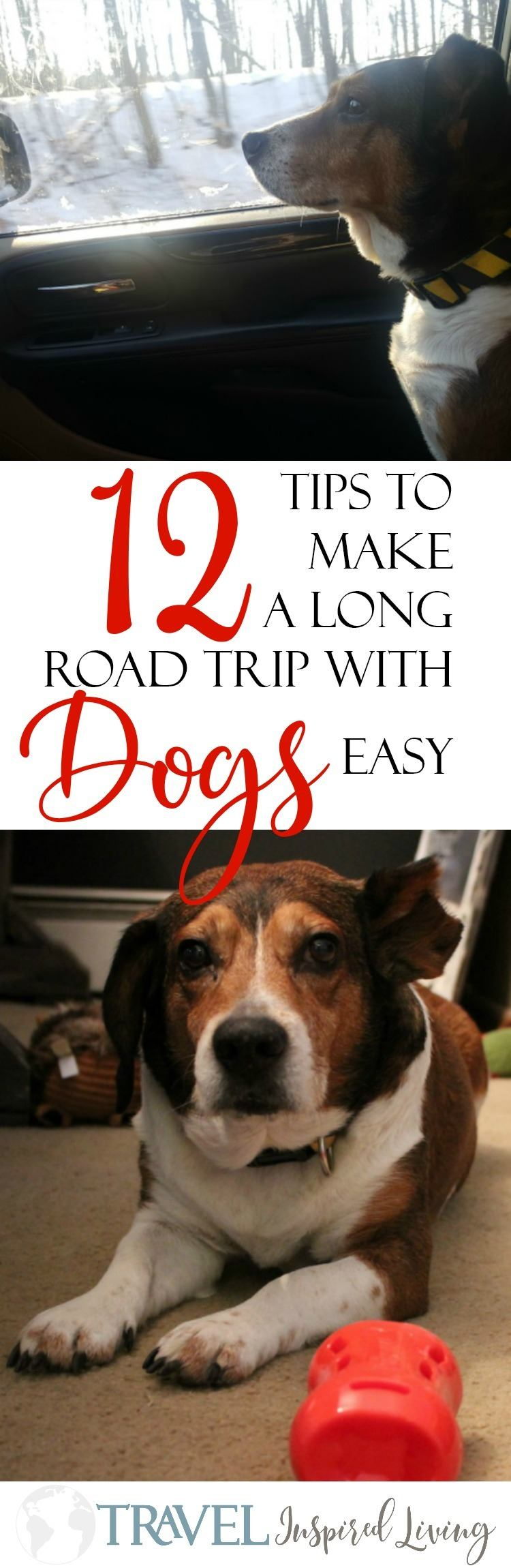 12 Tips to make a long road trip with your dog easy- including a list things you don't want to forget when you pack.