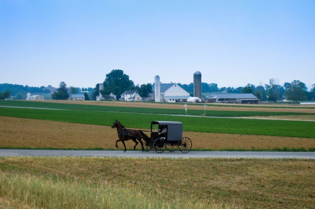 An Amish buggy in Ohio's Amish Country