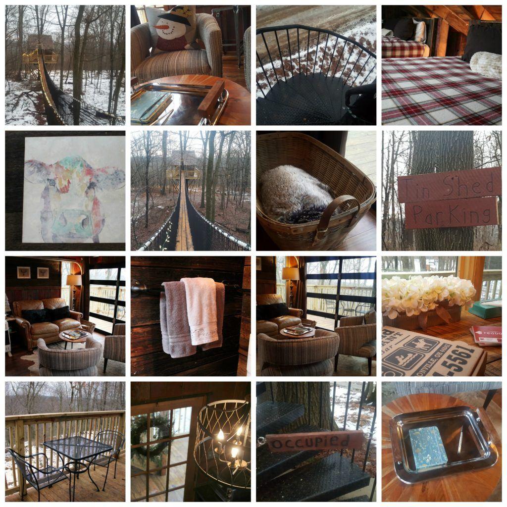 Tin Shed Treehouse photos