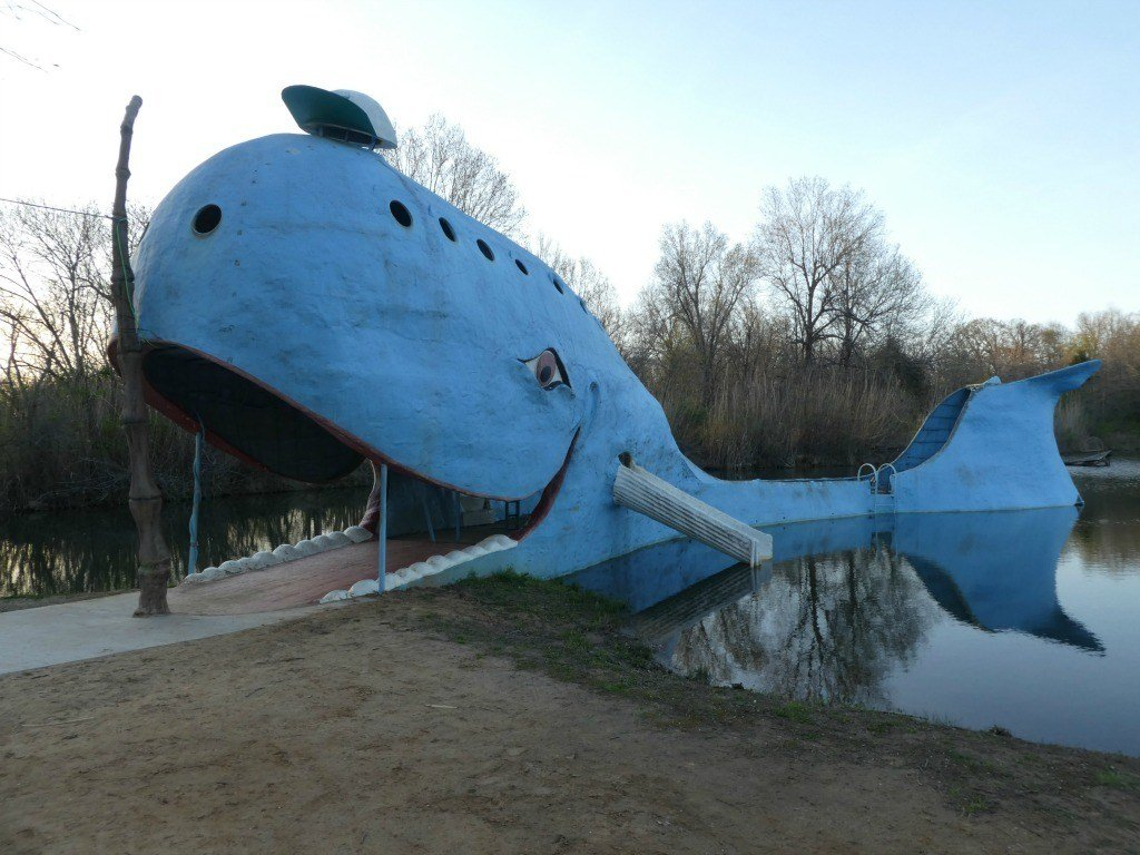 Visit the Blue Whale in the evening for less visitors