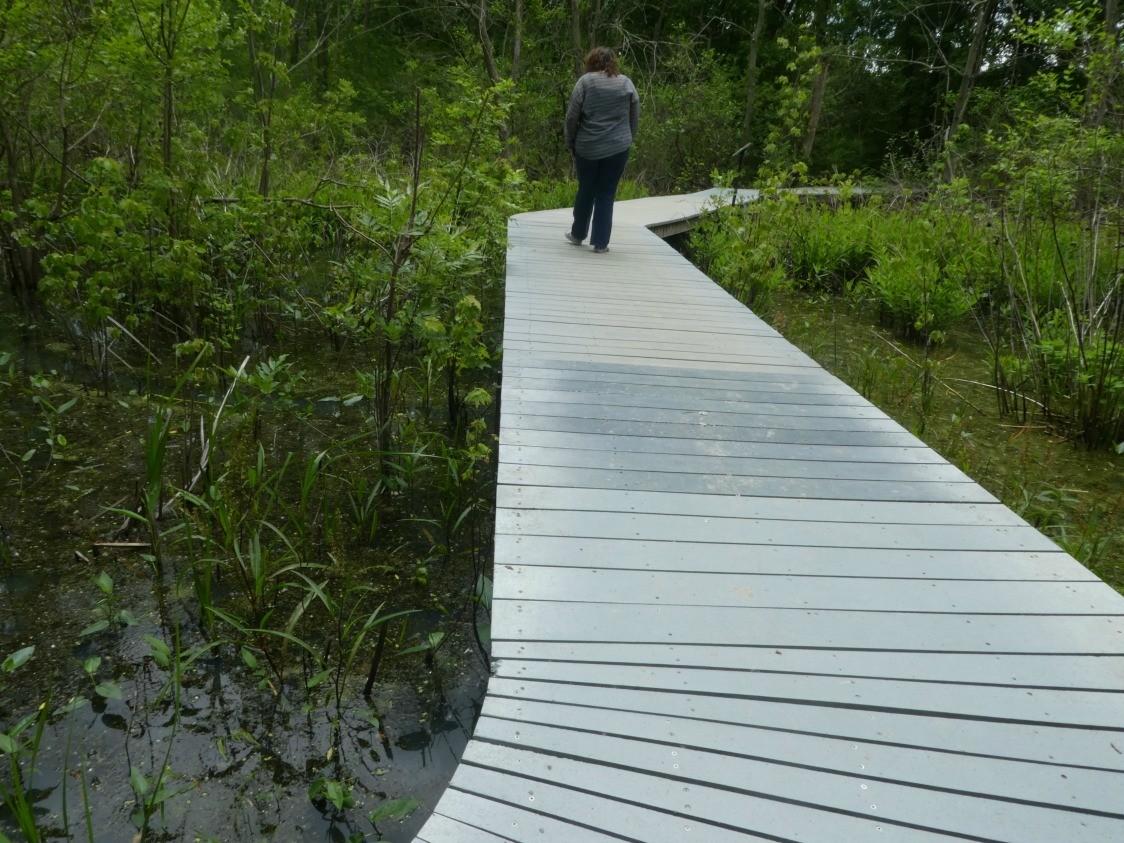 Kelleys island trail