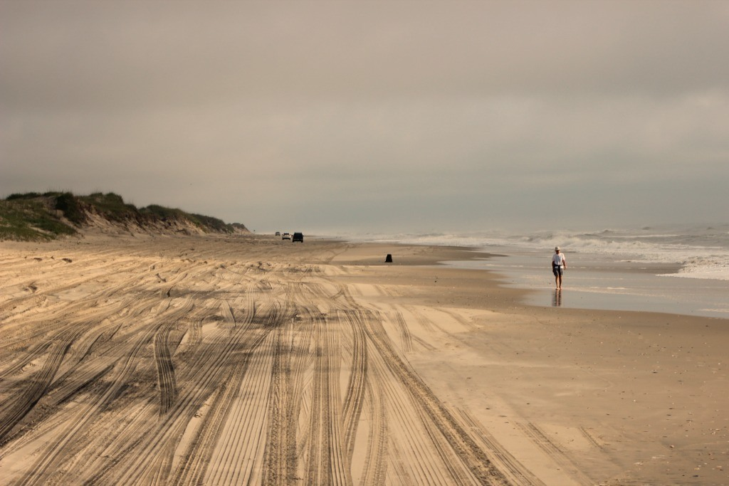 Viewing the 4x4 beach for the first time on a wild horse tour with Corolla Outback Adventures.