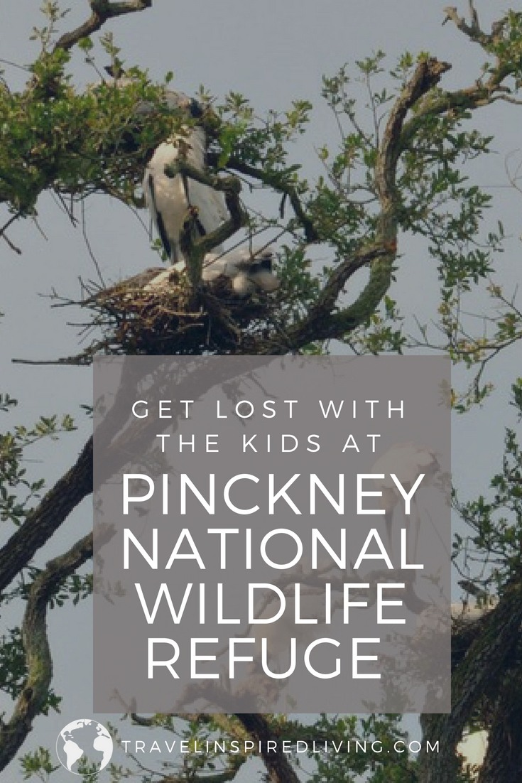 Get lost with the kids at Pinckney National Wildlife Refuge in Hilton Head, South Carolina.