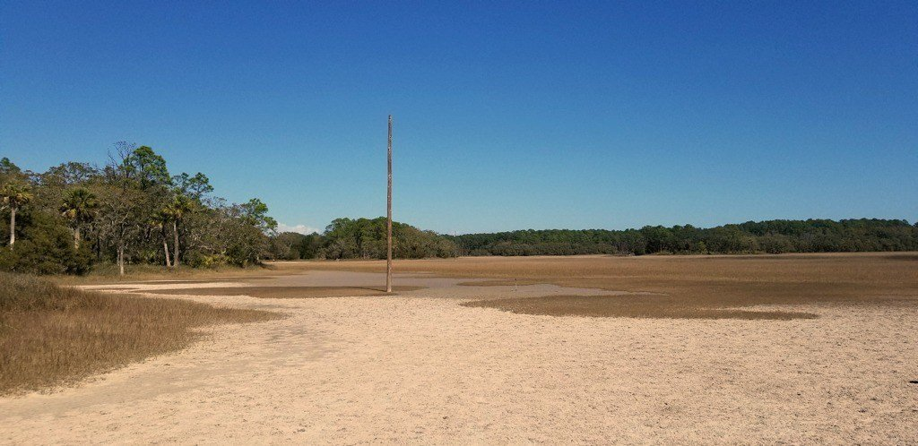 Mud Flats of Pinckney Island
