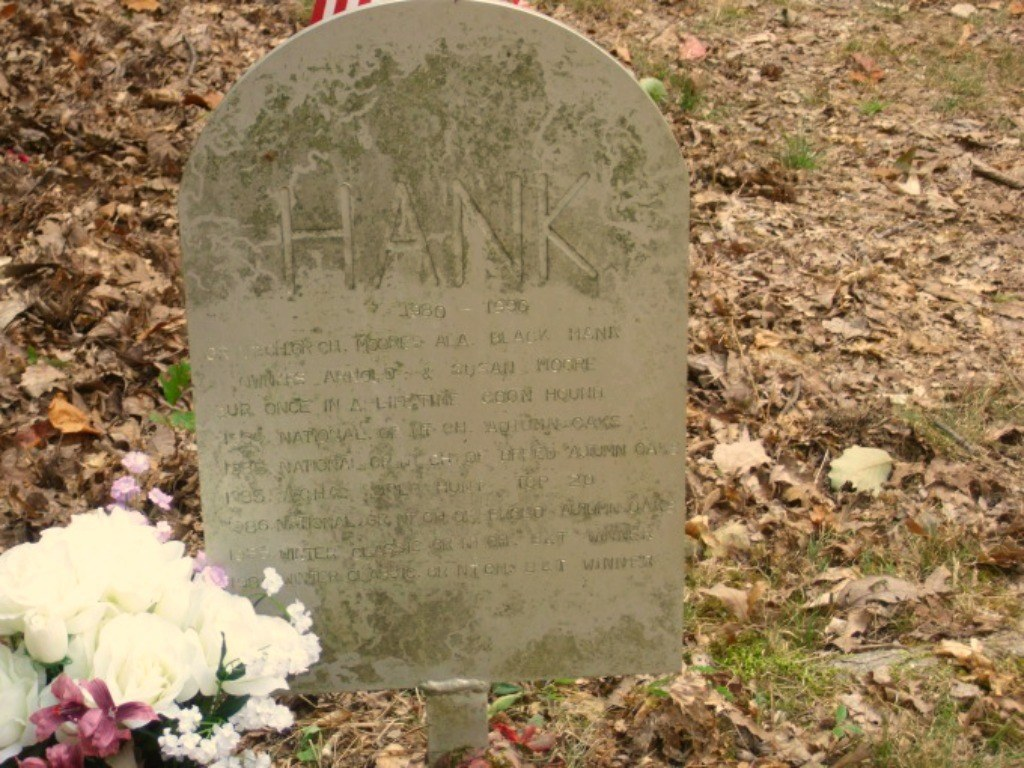 hank coon dog cemetery